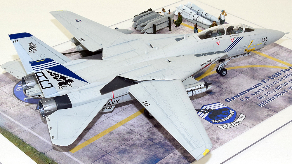 "Grumman F-14B Tomcat ""Pukin' Dogs"""