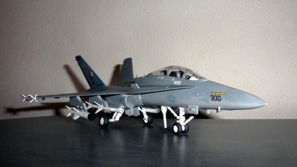 F/A-18 WILD WEASEL C/D