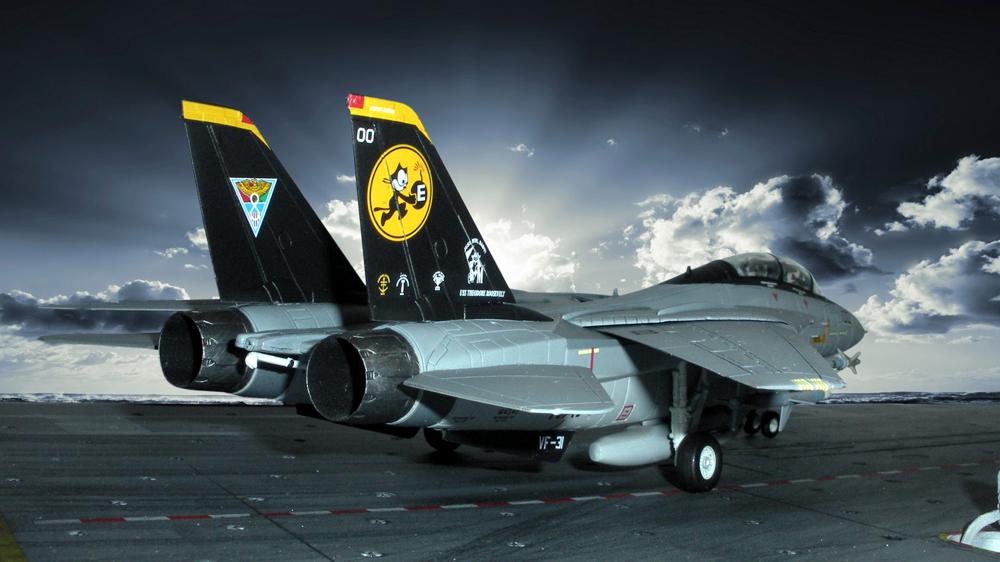 """Grumman F-14D Super Tomcat """"Last Flight"""""""